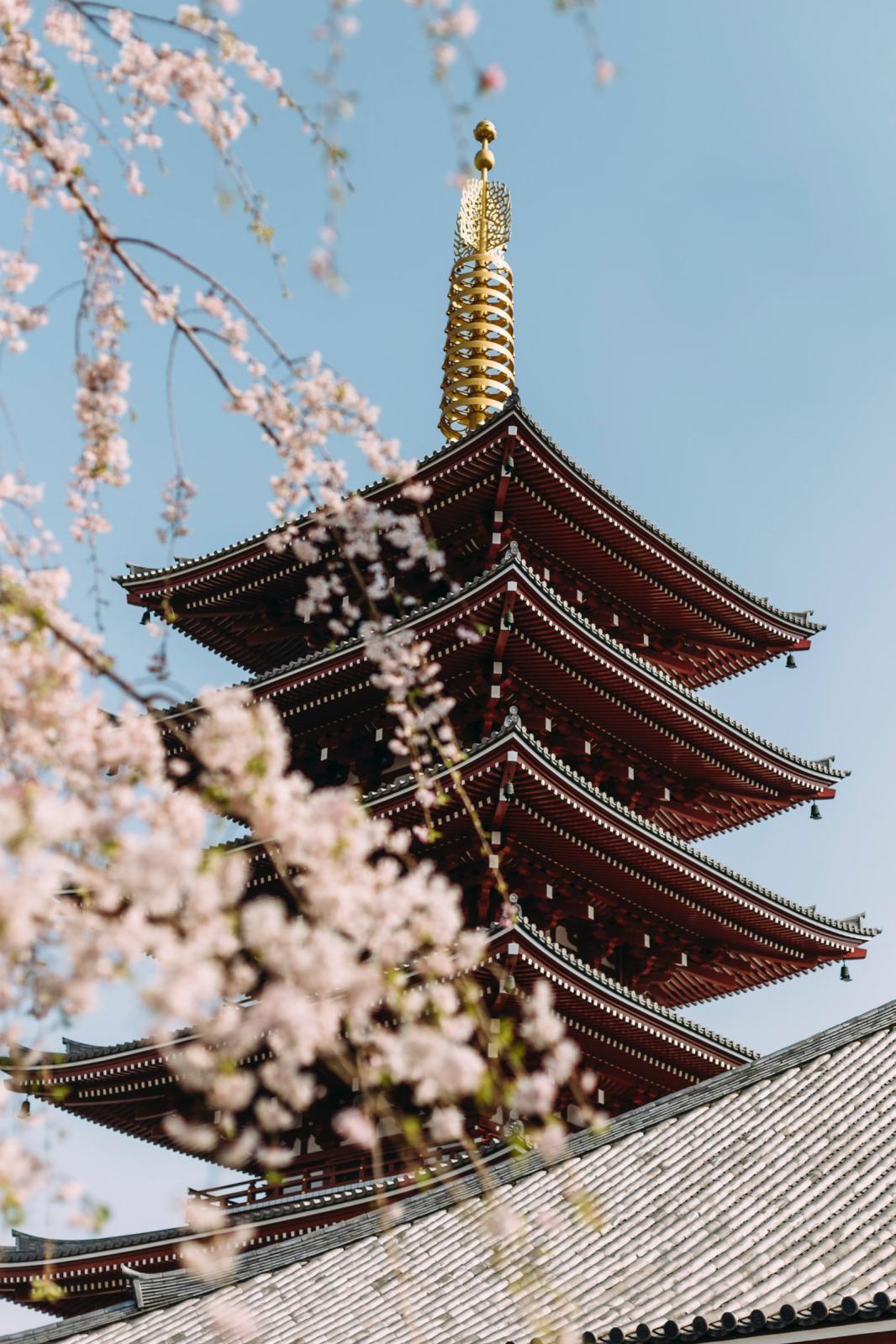 mini_WOOD_JAPAN.jpg